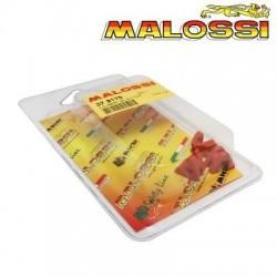 Juego guias variador Malossi Multivar 2000 Rodillos pequeños (16x13)