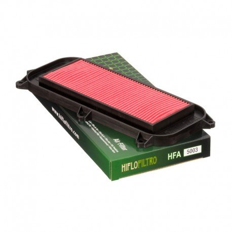 Filtro de aire Kymco Dink, Grand Dink 125/150/250, Xciting 250/300